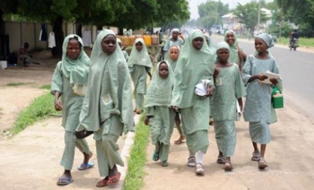 Nigeria Sets Up Panel on Abducted Girls - Executive Salad