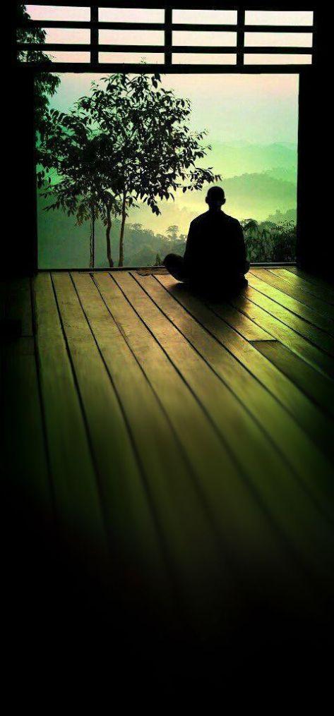 Meditation - Executive Salad