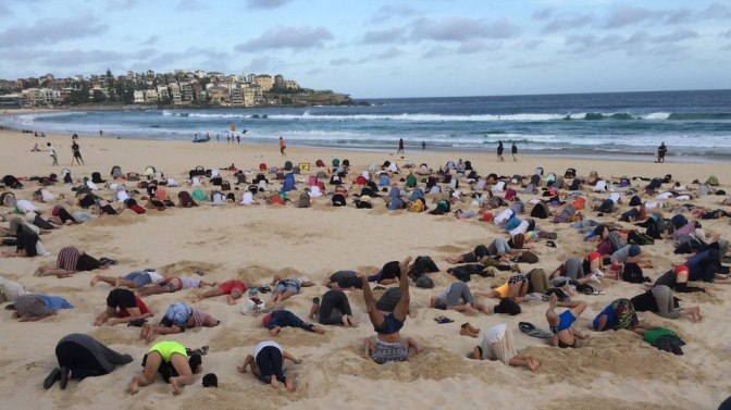 Australians put heads in the sand for Bondi Beach protest - Executive Salad